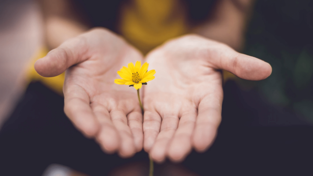 A small yellow flower grows between a woman's hands.
